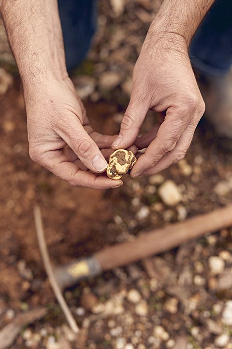 Darren Kamp Gold Prospector 0697